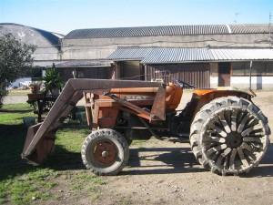 STO-trattorevecchio